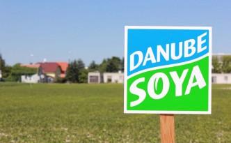 Biosoja aus Wien. Bald soll in der Donauregion mehr Soja angebaut werden.