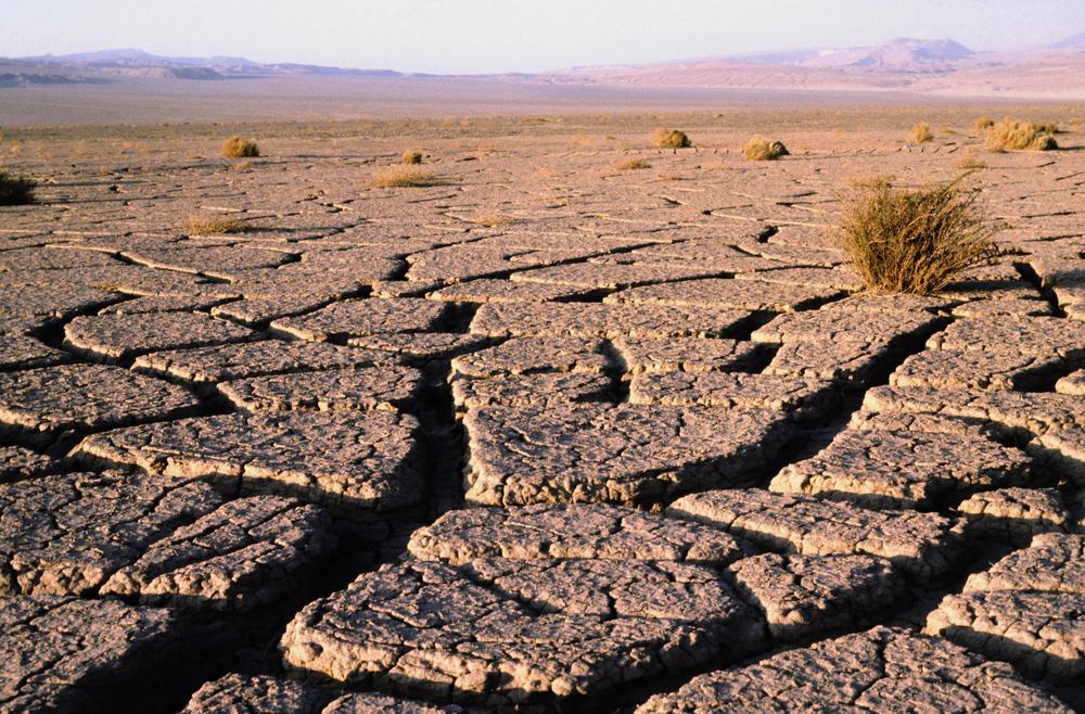 Ausgetrocknete Atacamawüste (c) Shutterstock